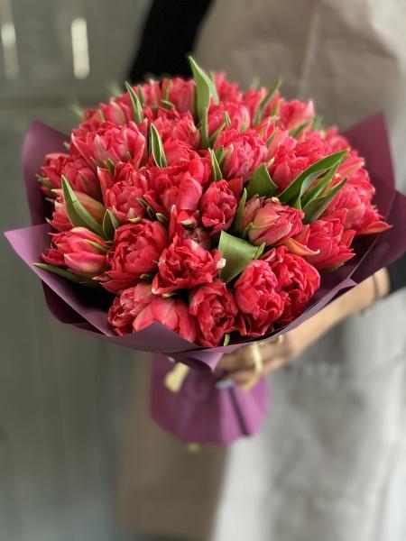 Букет из 25 пионовидного тюльпана Флэш Поинт