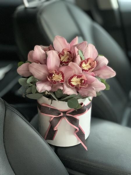 Шляпная коробка с 7 орхидеями и эвкалиптом