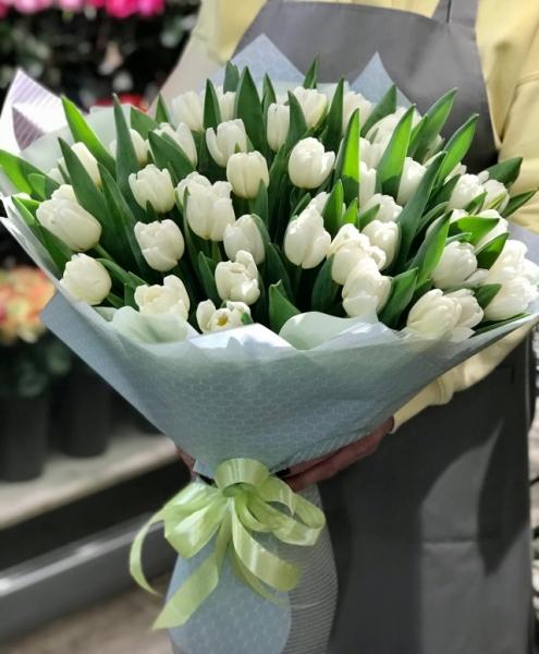 51 белых Тюльпанов